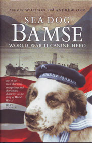 Bamse Book
